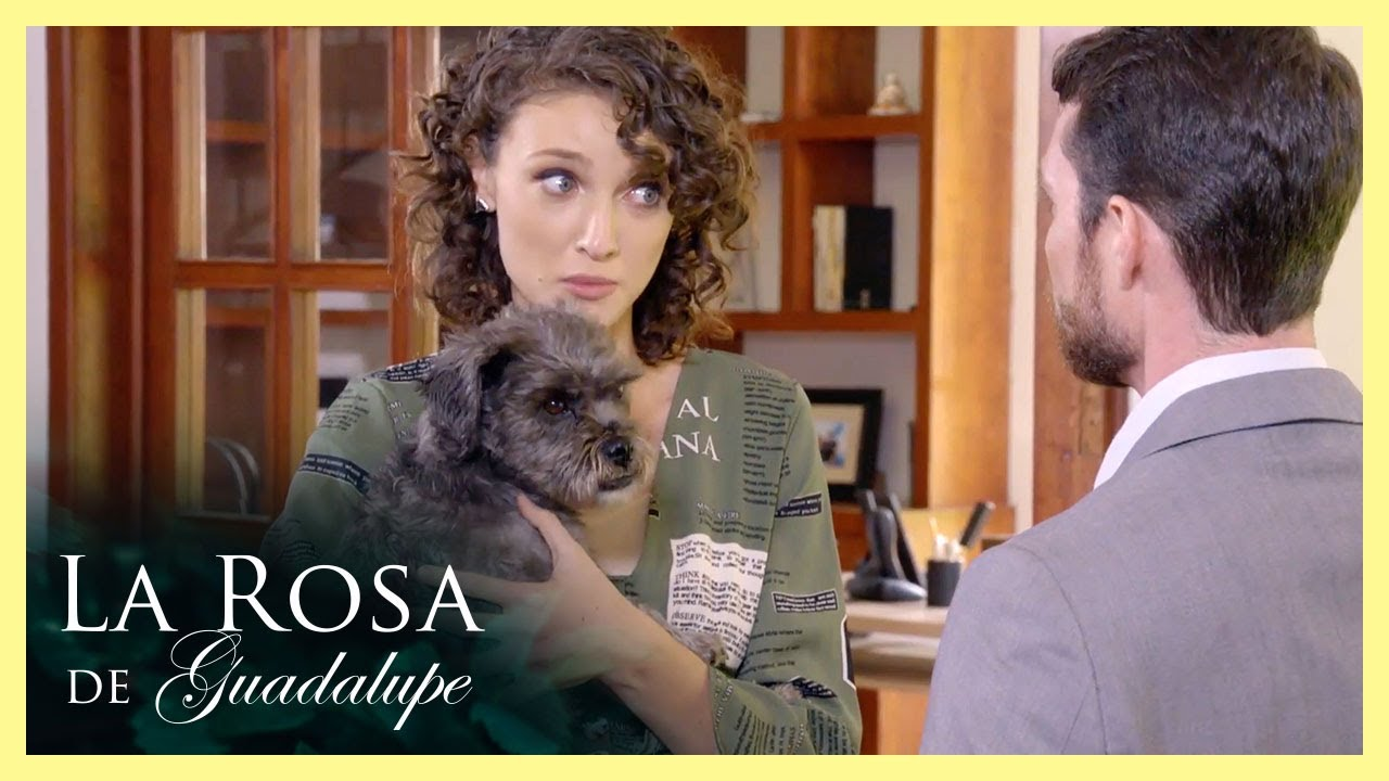 ¡Carolina se da cuenta que Arturo es un narcisista! | Odio por amor | La Rosa de Guadalupe