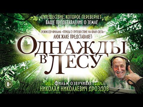 фильм Однажды в лесу / Сокровенные тайны живой природы HD