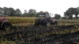case magnum 7110 en 7140 aan het spelen in de mais