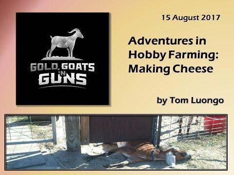 Gold Goats 'n Guns -- Adventures in Hobby Farming:  Making Cheese