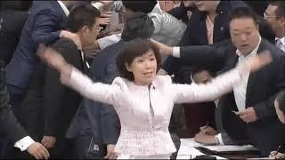 #辻政信孫堀内光一郎嫁にして紀子さまママ友議員堀内詔子