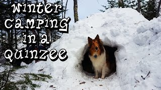 Winter Camping in a Quinzee with My Dog