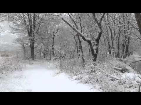 Dirk Whitebreast | Dashing Through The Snow... • Marshalltown, IA • December 24, 2015