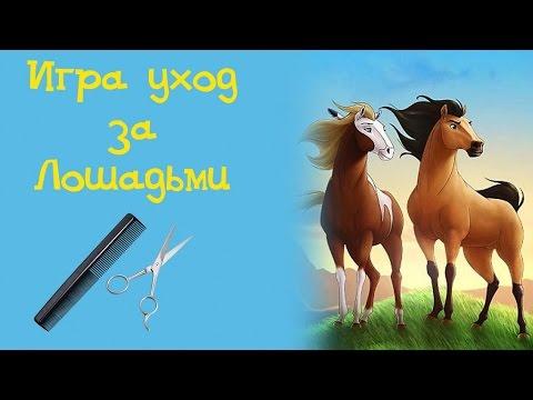 Игра Уход за лошадьми