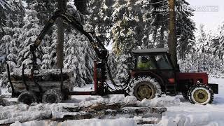 Zetor 7245 przyczepa leśna KTS składanie drewna.