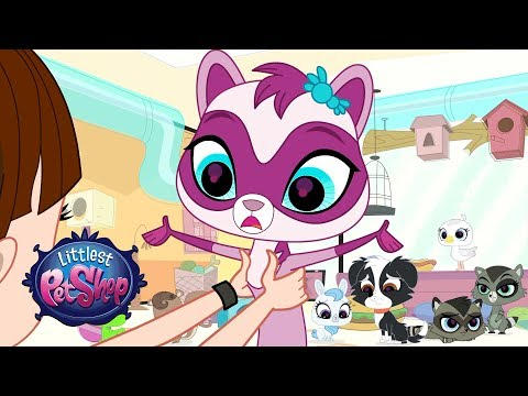 Littlest Pet Shop Season 3 - 'Meet The Sweetest Ferret, Jebbie!' Official Clip