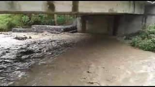 Video Banjir jembatan Mantangisi Ampana Tete download MP3, 3GP, MP4, WEBM, AVI, FLV Agustus 2018