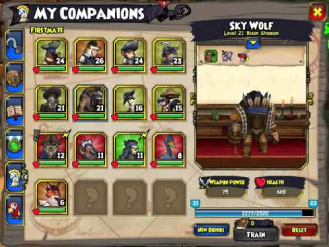Pirate101: My Privateer companions(Mostly)