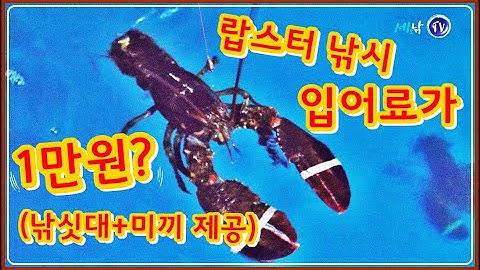 [4K] 랍스터 낚시 입어료가 1만원? /낚싯대 미끼 무상 제공?/연곡낚시터/사계절 하우스 바다낚시터[lobster fishing]송어,바닷가재/소니 PCM-D10수음