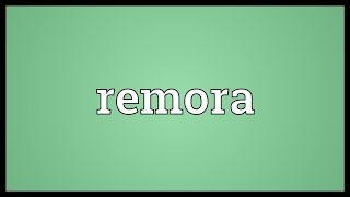 Remora Meaning