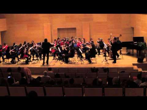 Adagio. Orquesta de Flautas del Conservatorio de Música de Córdoba, España