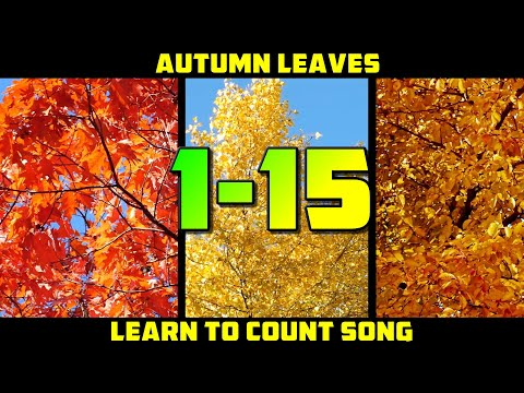 LEARN TO COUNT 1-15 SONG   Autumn Counting Song For Kids