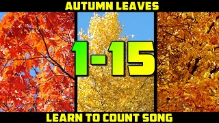 LEARN TO COUNT 1-15 SONG | Autumn counting song for kids