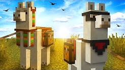 Everything You Need To Know About LLAMAS In Minecraft!