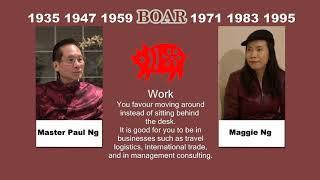 2020, Feng Shui Master, Paulng, Chinese Zodiac Animals, Boar