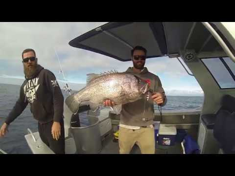 Dhufish jigging with Indian pacific and Abrohlos jigs from Expert tackle