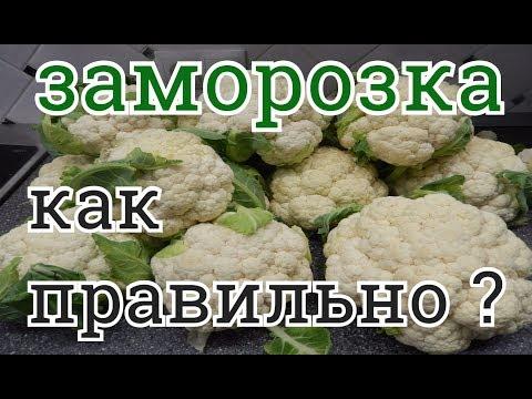 Как правильно заморозить цветную капусту для прикорма