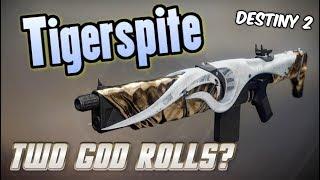 Two Good Rolls, One Weapon - TIGERSPITE DREAMING CITY AUTO RIFLE! Destiny 2 Forsaken PVP Showcase