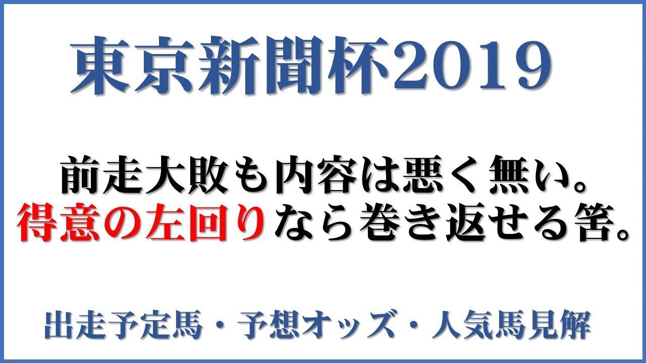新聞 オッズ 東京 杯