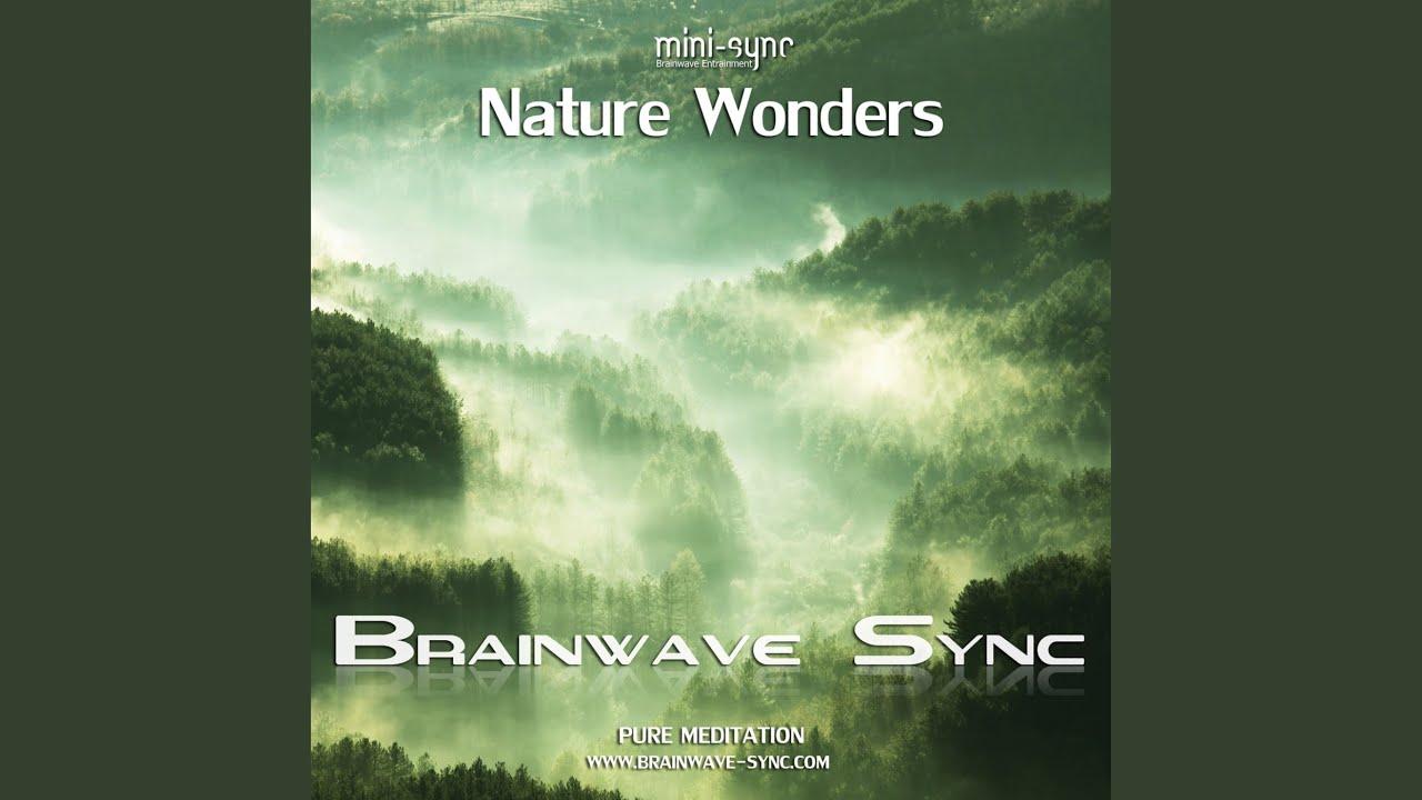 brainwave entrainment Binaural beats & brainwave entrainment music cds and mp3 downloads : brainwave entrainment - cds mp3s dvds brainwave entrainment, binaural beats, brainwaves, brain.