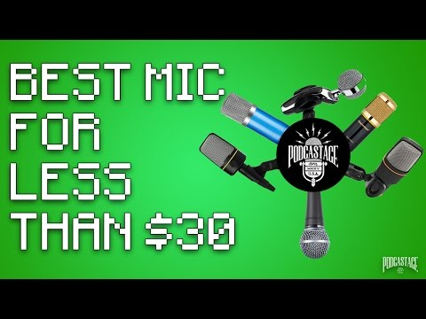 What's The Best Mic Under $30?