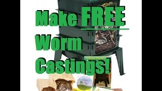 How To Set up a Cheap Worm Bin For Less Than $10