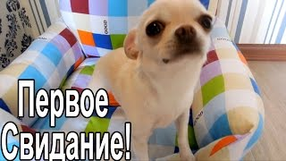 VLOG: Макин первый раз / Вкусняшки / Домашний боулинг