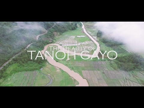 The Beauty of Tanoh Gayo Teaser
