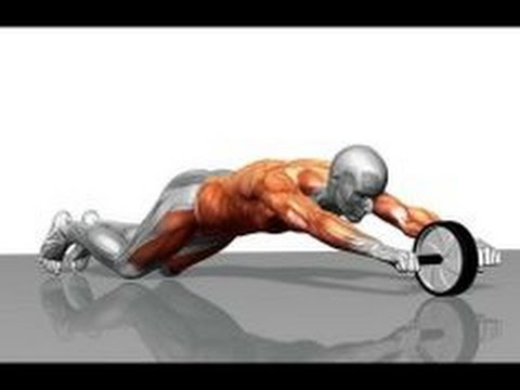 How To Use an Abs Roller with workout and form guide | Fitness Model Tutorial