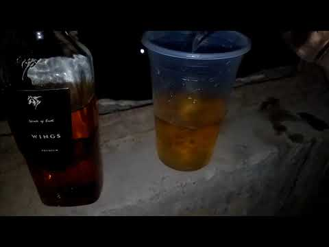 Golden wings Whisky Review | Daily Daaru Vlogs