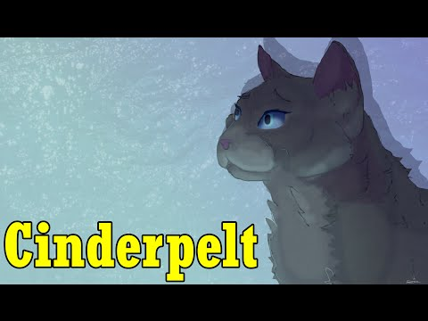 Why Cinderpelt is a Great Character! - Analyzing Warrior Cats
