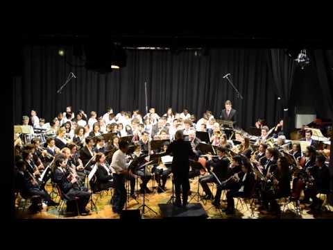 I musicanti di Brema - Angelo Sormani