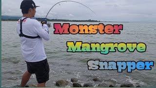FISHING FOR MONSTER SNAPPER|BEST LURE FOR SNAPPER|MICRO JIGGING