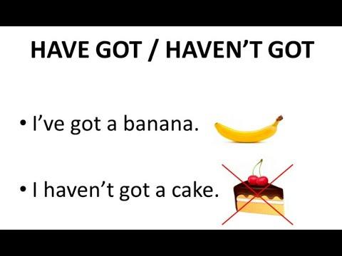 Have got / haven't got