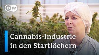 Cannabis-Industrie fordert Freigabe für medizinisches Marihuana | DW Nachrichten