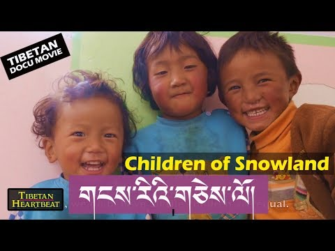 Children of Snowland - Award Winning Tibetan Documentary