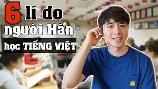 Lí do người Hàn Quốc đua nhau đi học tiếng Việt?