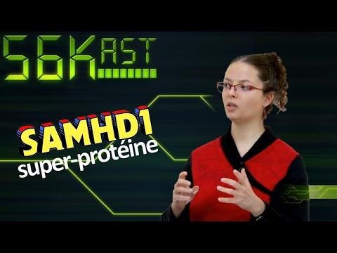 56Kast #95 – Raconte-moi ta thèse sur SAMHD1, super-protéine