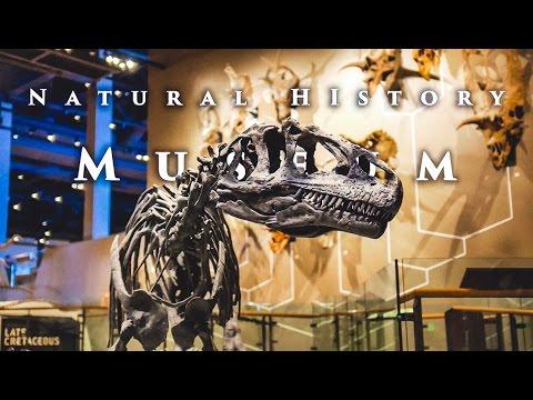 Natural History Museum | Salt Lake City, Utah