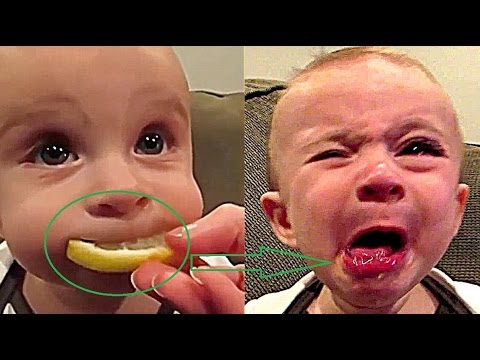 Funny babies videos try not to laugh challenge | Super Funny baby cute kids vines compilation