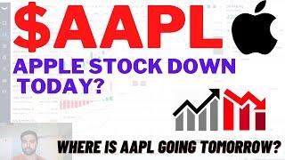 $AAPL APPLE STOCK DOWN AGAIN? Apple Stock Analysis   Live Wellthy Stocks