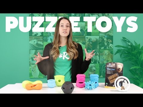 Puzzle Toy Roundup #2 | Rover.com