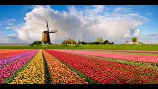 WINDMILLS OF YOUR MIND- MICHEL LEGRAND-COVER PROF.MIKI