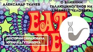 Александр Ткачев - О влиянии галлюциногенов на древнего человека