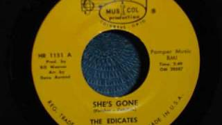 The Edicates - She's Gone