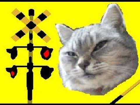 踏切かんかん猫にゃん【Railroad crossing cat】