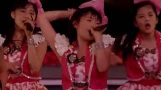 スマイレージライブツアー 2012秋 〜ちょいカワ番長〜