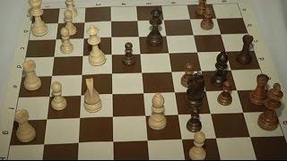 В Алматы завершился Кубок Центральной Азии по шахматам (01.12.15)(, 2015-12-02T06:05:38.000Z)