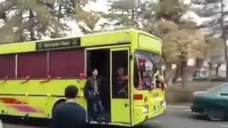 Свадебный кортеж из автобусов. Алматы
