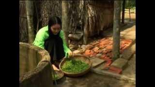 RAU ĐẮNG TÌNH XA - Lâm Hoàng - Thu Huyền